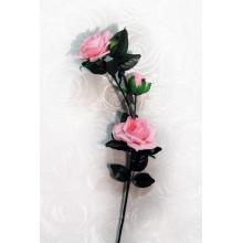Роза 3 головы